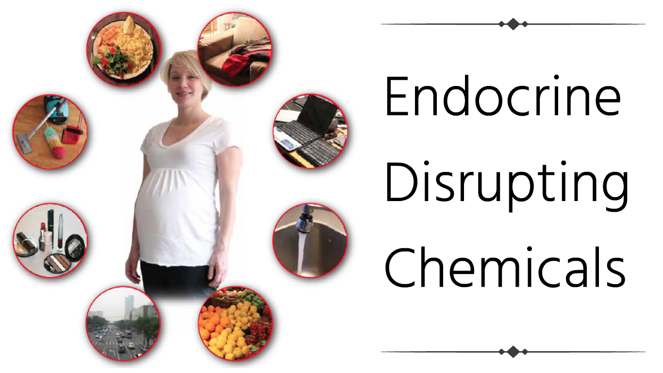 How Do we Get Exposed To Endocrine Disrupting Chemicals?